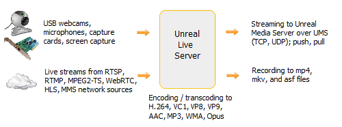 Unreal Live Server diagram